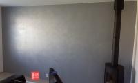 renotop stříbný kov